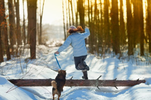 Jak pečovat o pejska v zimě