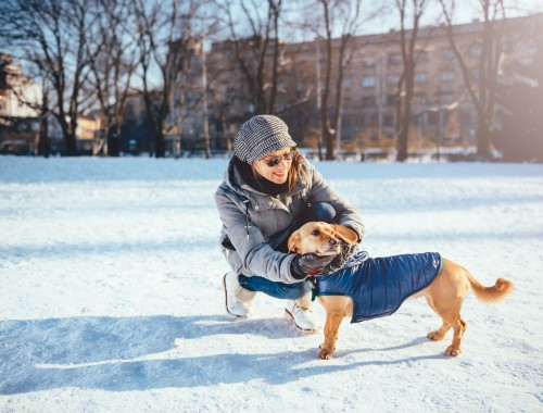 Woman Petting Her Dog wearing winter coat In Snow